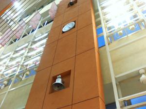 bell (7)