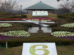 flower (121)