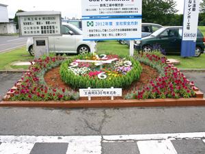 flower (137)